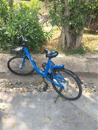 bluegogo bike