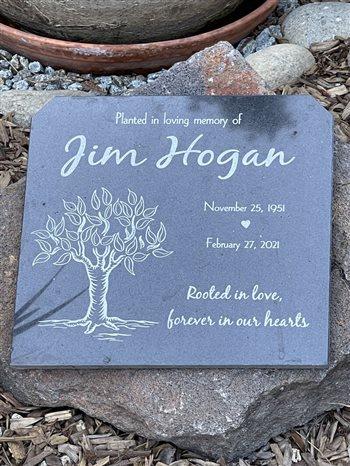 jim hogan's tree