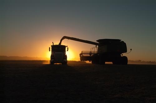 combine harvester emptying